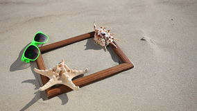 Frame with seashell, starfish and sunglasses on the beach stock video