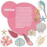 Frame of seashell Royalty Free Stock Photo