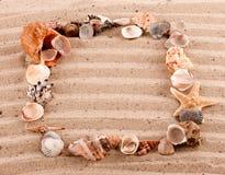 Frame of seashells Stock Image