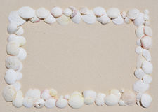 Frame of seashells. Frame made of seashells on the sandy beach Stock Photography