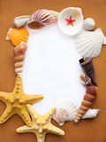 Frame with seashells Stock Photo