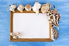 Frame and seashells on a blue wooden background stock photo