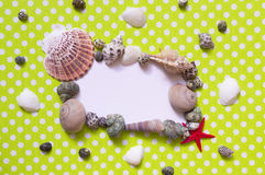 Frame with seashells Royalty Free Stock Photo