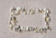Frame of seashells on the pink sand Stock Photo