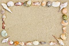 Frame of seashells. On the sand royalty free stock photography