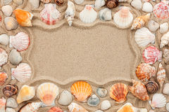 Frame of seashells Royalty Free Stock Photography