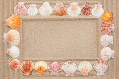 Frame of seashells on the sand Royalty Free Stock Images