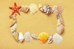 Frame of seashells on the sand Stock Photos