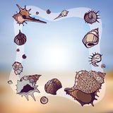 Frame of seashells. vector illustration