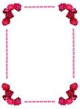 Frame selvagem das rosas Foto de Stock