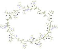 Frame in the shape of an ellipse of berries and flowers. EPS10  illustration Royalty Free Stock Photography