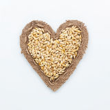 Frame in the shape of heart with  barley Stock Photography