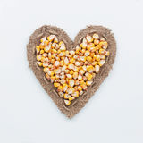 Frame in the shape of heart with corn Stock Image