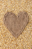 Frame in the shape of heart made of burlap with barley Royalty Free Stock Images