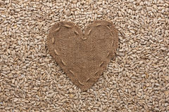 Frame in the shape of heart made of burlap with sunflower seeds Royalty Free Stock Photography