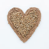 Frame in the shape of heart with  rye Royalty Free Stock Photo