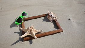 Frame with shell starfish sunglasses. HD with motorized slider. 1080p. Stock Image