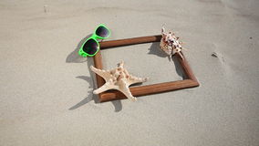Frame with shell starfish sunglasses. HD with motorized slider. 1080p. stock footage
