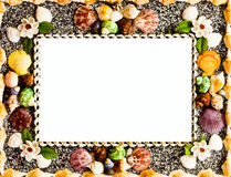 Frame shell Royalty Free Stock Photos