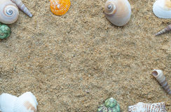 Frame of shellfish on the sand background. royalty free stock image