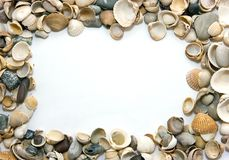 Frame of shells. Page frame made of shells Royalty Free Stock Images