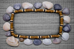 Frame with shells Stock Photography