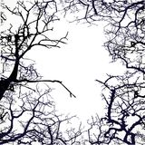 Frame from silhouettes of bare branches of trees Stock Images