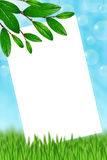 Frame with sky,soap bubbles, green leaves and grass Stock Photo