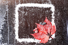 Frame of the snow with a red leaf on a dark wooden background snowy winter brochure. Frame of the snow with a red leaf on a dark wooden background stock photo
