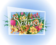 Frame with Spring background with flowers and grass Royalty Free Stock Image