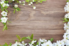 Frame of spring flowers on a wooden background.  Stock Photos