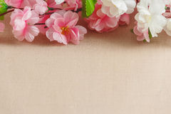 Frame of spring flowers on a wooden ,with space for text ,spring or summer theme Royalty Free Stock Photo
