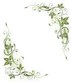 Frame, spring, leaves Stock Photo