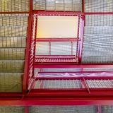 Frame Square Flight of stairs viewed from the bottom floor inside a building with white wall. The stairs have grated treads and bright red handrails royalty free stock photo
