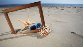 Frame with starfish sunglasses. Royalty Free Stock Images