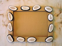 Frame with stones with leaves skeletons Royalty Free Stock Photos