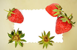 Frame with strawberries Stock Photography