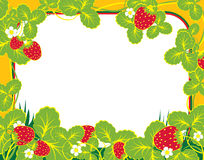 Frame strawberry. Frame summer with strawberry and foliage Royalty Free Stock Image
