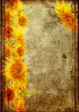 Frame from  sunflower grunge Stock Images
