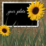Frame with sunflowers Stock Photography