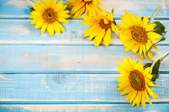 Frame with sunflowers Royalty Free Stock Photography