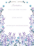 A  frame, template of a postcard with the watercolor blue berries and violet branches, wedding invitation Stock Photo