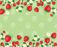 Frame template with strawberries, leafs and flowers. Vector background. Frame template vector illustration. Concept background picture Stock Images