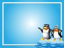 Frame template with two penquins Stock Photos