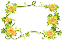 Frame template with yellow flowers Royalty Free Stock Photos