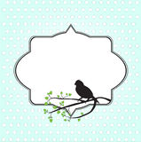 Frame for text. With bird and tree branch Stock Images
