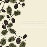 Frame for text with fir cone and twig. Background frame for text with fir cones and twigs. spruce, pine, fir, spruce, fir needles. can be used as a greeting card Stock Image