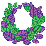 Frame for text from green and purple leaves of fresh basil vector illustration Stock Photos