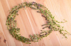 Frame from thyme Royalty Free Stock Images