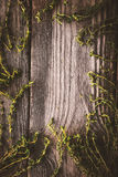 Frame of the thyme sprigs on the wooden board vertical Royalty Free Stock Photo
